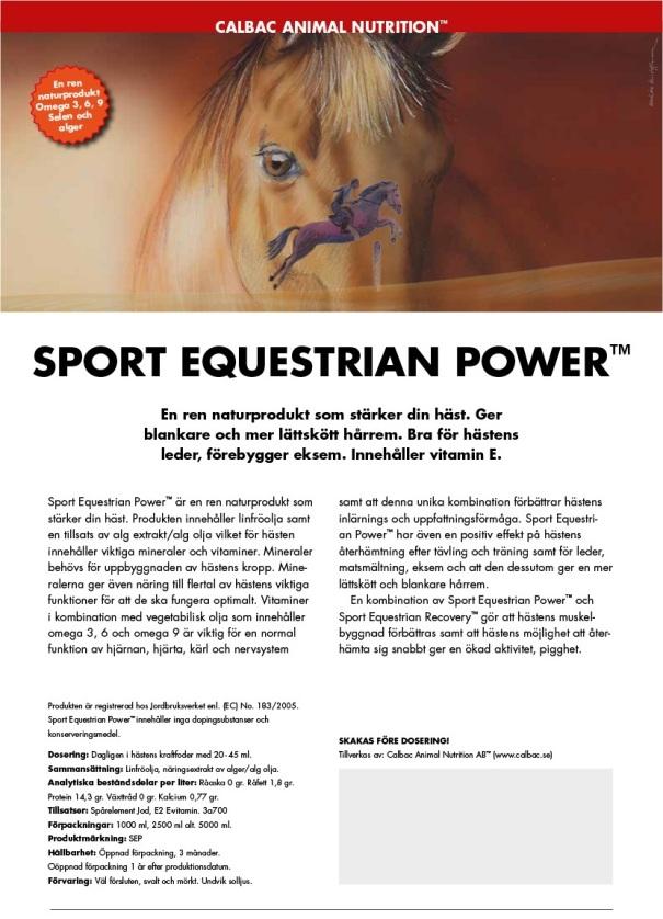 sport_equestrian_sport